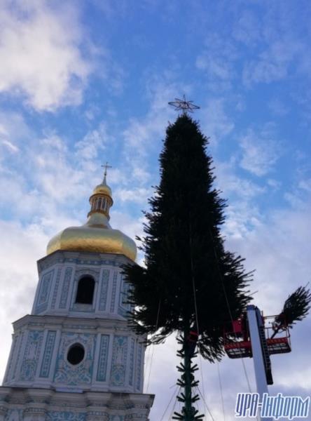 Ёлочка на диете? : как собирают новогоднее дерево страны